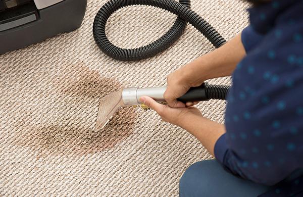 Carpet Cleaning Miami